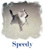 grosse lechouille de la part de speedy  .. !!
